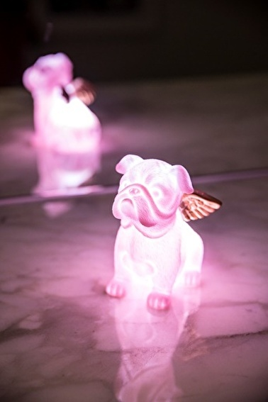 Arma House Pembe Melek Köpek 3D Led Işık Pembe